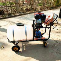 宇悦大量供应/150L猪场养殖场手推式汽油打药机/喷雾消毒车