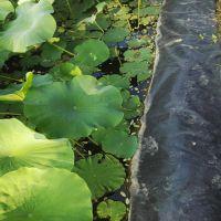 广西藕池防渗膜-抗氧化全新料防渗膜广泛使用