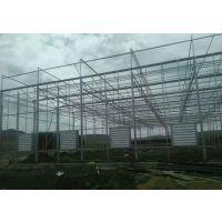 山东临沂纹络型圆顶玻璃温室大棚轻钢结构施工厂家