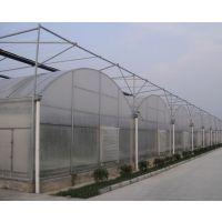 建农业薄膜连栋蔬菜温室多大面积可以申请农业补贴呢/薄膜蔬菜温室价格