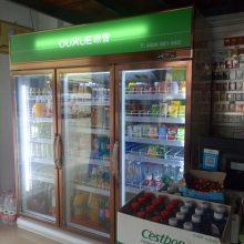 福建双门饮料冷藏展示柜价格去哪家买好