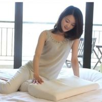 赛恩太空记忆棉枕芯凝胶保健护颈枕头 止鼾促进睡眠送亲人