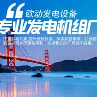 扬州欧动发电设备有限公司