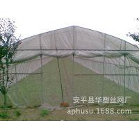 【加工定做】防虫网、蔬菜防虫网、尼龙防虫网、乙烯防虫网