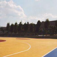 室外篮球场木地板【广西三杰体育】塑胶场地施工专家