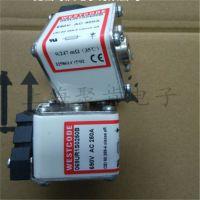 专业代理巴斯曼170M4018 170M3814 熔断器