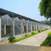 智能玻璃温室大棚材料厂家 智能温室大棚 智能温室大棚全包价格