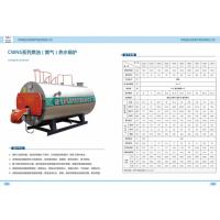 河南省恒信锅炉厂家直销CWNS系类燃油气热水锅炉
