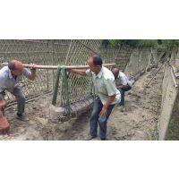 郫县紫薇篱笆墙,1.5米高树制围墙,紫薇编栅栏技术,生态栅栏树价格