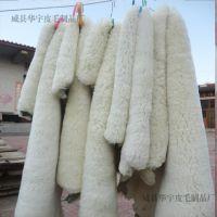 本厂销售彩色皮毛一体服装面料皮 手套皮 鞋口皮 领子羊羔皮