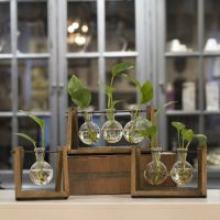 美式乡村透明玻璃花瓶微景观花器植物培养器皿家居工艺品摆件批发