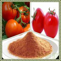 番茄粉 番茄汁粉  含量 水溶性好 西红柿粉