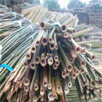 2.3米-2.5米竹杆批发 菜园搭架 蔬菜支撑 篱笆装饰