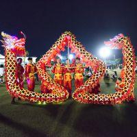 特色大学生校园舞龙团 3号九节红金龙带灯光 特色校园文化项目