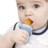 sharecar婴儿水果咬咬乐果蔬乐宝宝吃水果袋辅食器奶嘴磨牙棒