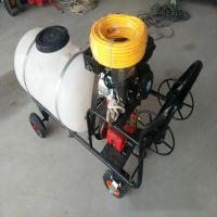 高压汽油喷雾器 卫生防疫消毒机 植保机械树林打药机