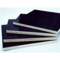 航宇兴星 (图)-木方模板-蔡甸模板木方