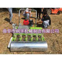 蔬菜人力播种机 供应香菜油菜白菜精播机 娃娃菜单粒播种机