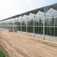 玻璃智能温室大棚控制系统温室骨架供应玻璃温室骨架连栋温室青州