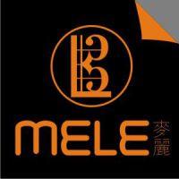 广州麦丽乐器有限公司
