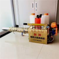 小型背负式水雾烟雾机 脉冲式高压电动打药消毒弥雾机