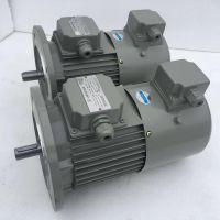 0.75KW变频电机东莞厂家直销减速电机三相异步电动机