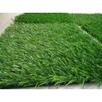 室外地板森利草坪