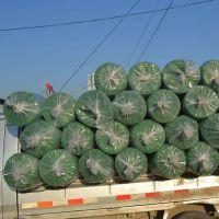 绿色覆盖围网 现货盖土网 优质三针加密网