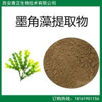 墨角藻提取物  墨角藻粉 速溶 浓缩 喷雾干燥 浸膏 粉 厂家