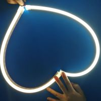 深圳供应LED招牌灯LED标示灯LED霓虹灯灯带硅胶套管定制厂家