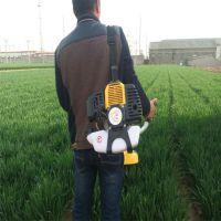 手推割草机的图片/割灌机无需让农民告别镰刀作业