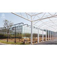 贵州大型植物工厂化生产玻璃温室大棚2万平、抗风抗震性好、16型建造公司