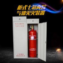 清远七氟丙烷 气体灭火设备 机房自动灭火装置 设计 安装