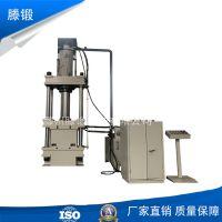 厂家定制160吨四柱液压机 bmc电表箱成型油压机 分线盒液压机
