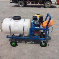 热销高射远程打药机 农用柴油高压喷雾器 养殖场手推式喷雾机