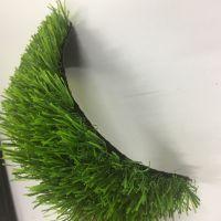 河北人造草坪 人工草坪幼儿园彩虹跑道 塑料草