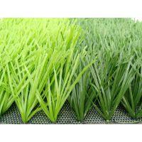足球场人造草,双面带茎单丝人造草坪