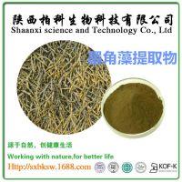 墨角藻提取物 墨角藻碘0.1% 0.3%墨角藻粉 天然墨角藻提取物 包邮