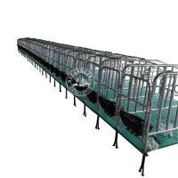 行业领先的养猪设备复合定位栏 猪用限位栏厂家直销