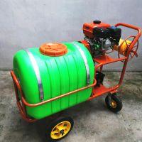 加厚材质农用柿子园高压打药机 防虫手推式喷雾器