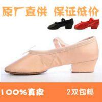 新款热销真皮教师鞋舞蹈鞋 帆布软底带跟练功鞋芭蕾舞体操猫爪鞋