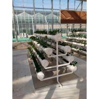 绿鑫立体栽培、无土栽培、水培、气雾培、基质栽培槽、立体栽培槽、植物生长架
