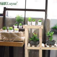 可定做创意多肉家居装饰品多肉仙人掌盆栽植物仿真摆件假花绿植室