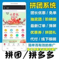 达达拼团优品拼更多商城网站建设微信公众号手机app开发系统源码