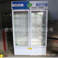 厂家热销啤酒冷藏展示柜啤酒饮料展示柜冰箱单门双门展示柜