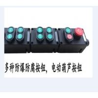 多种防爆防腐按钮开关,电动葫芦按钮,防爆主令控制器BZA8060-4 BZA53-A2