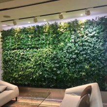 真植物墙-保定植物墙-在线咨询-专业安装(查看)