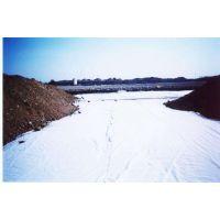 格尔木市复合土工膜 聚乙烯短丝复合土工膜出厂价