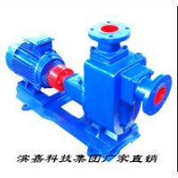 滨嘉科技集团ZX型卧式自吸离心泵