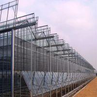 蔬菜大棚智能玻璃温室 纹络型玻璃暖房 生态餐厅连栋温室户外展厅